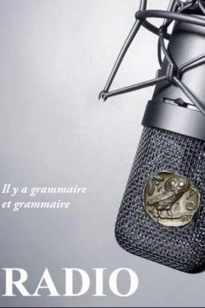 Il y a grammaire et grammaire